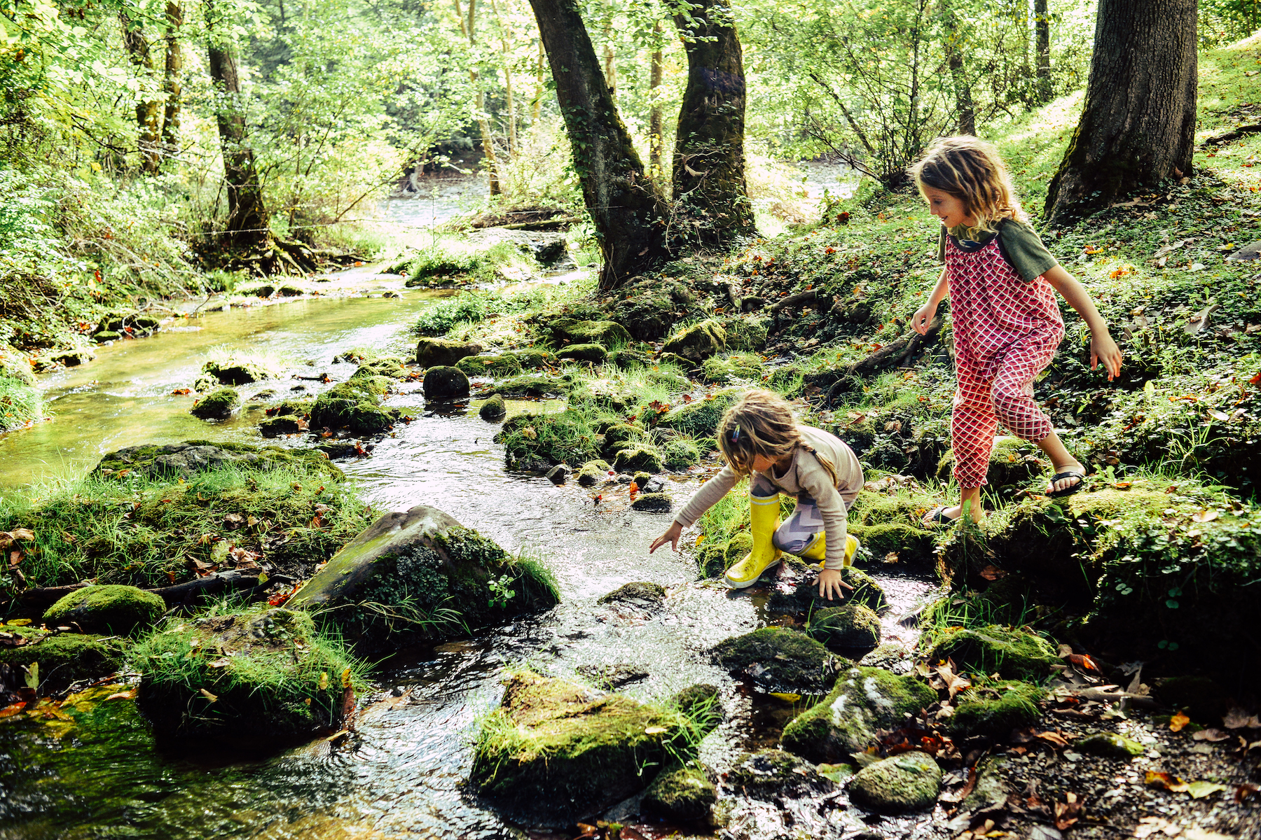 Kids playing at forested creek